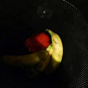frutta in un cestino